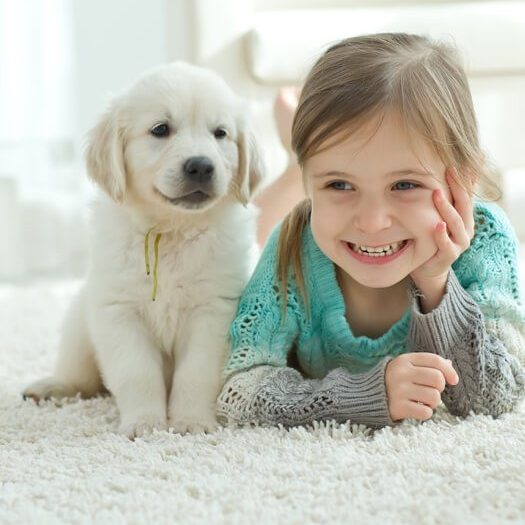 Kid and dog on carpet | The Floor Fashion Centre