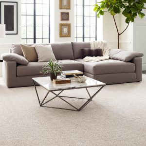 Perfect carpet in living rooms | The Floor Fashion Centre