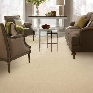 Carpet in living room | The Floor Fashion Centre