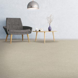 Soft comfort carpet flooring of the room | The Floor Fashion Centre