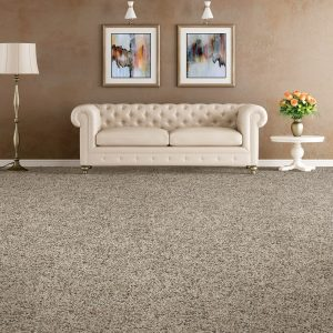Soft distinction carpet flooring | The Floor Fashion Centre